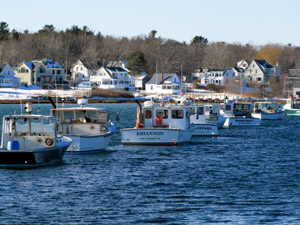 A Frosty View of Cape Porpoise Harbor