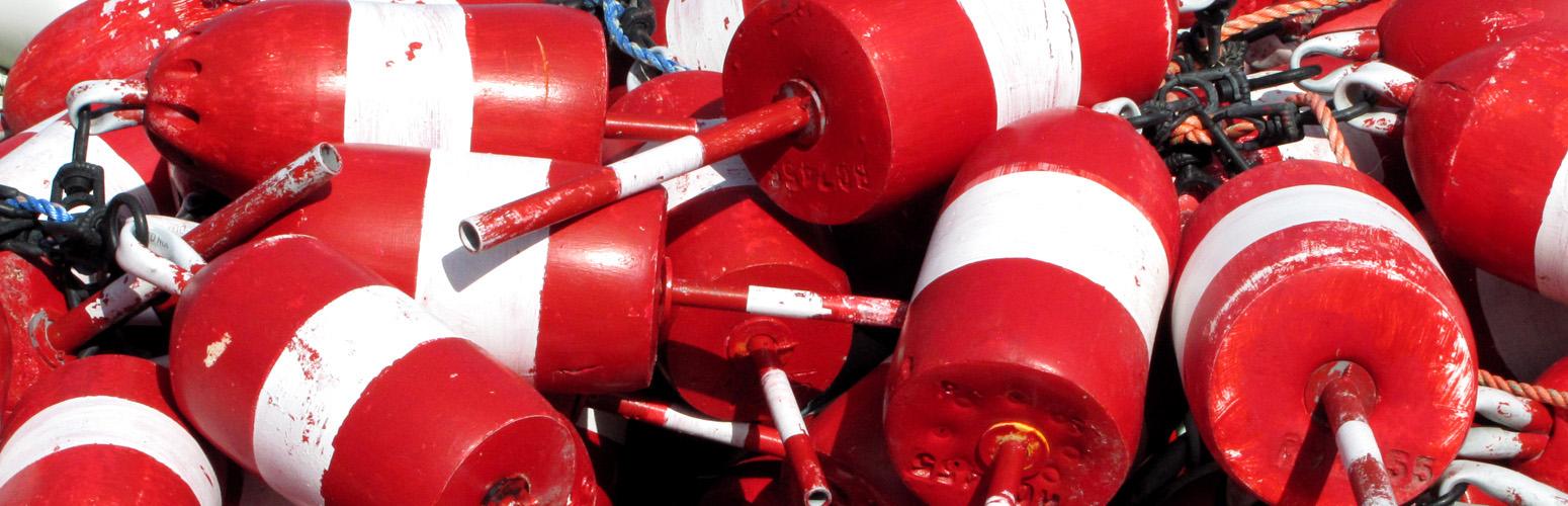 2MIM_buoys