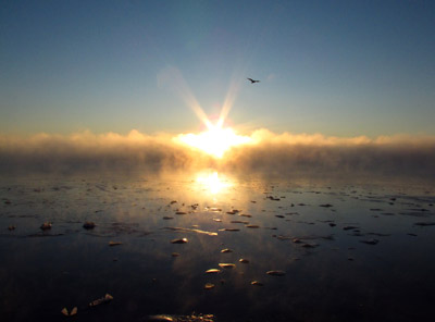 Sun rises above sea smoke