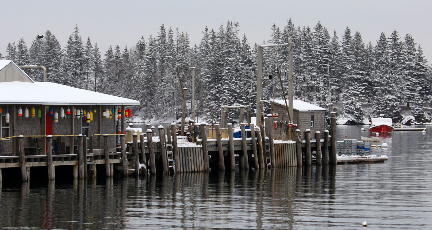 Owls Head Harbor in Winter