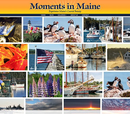 Moments in Maine Gallery